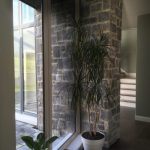 creative_design_group_architects_dublin66-150x150 Residential Project Photos architects design